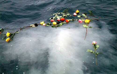 scattered flowers for a burial at sea