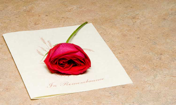 a single red rose on an order of service