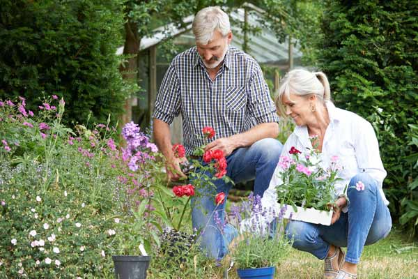 A husband and wife plant flowers in their garden.