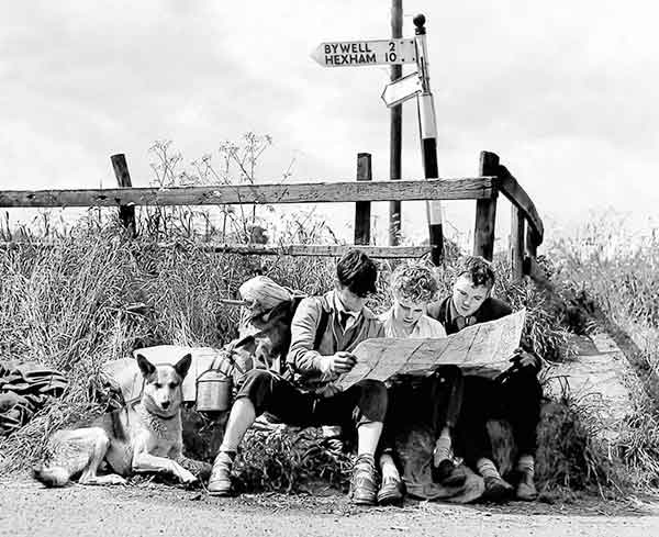 Group of children and a dog sat on the ground looking at a map